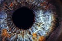 eye_01